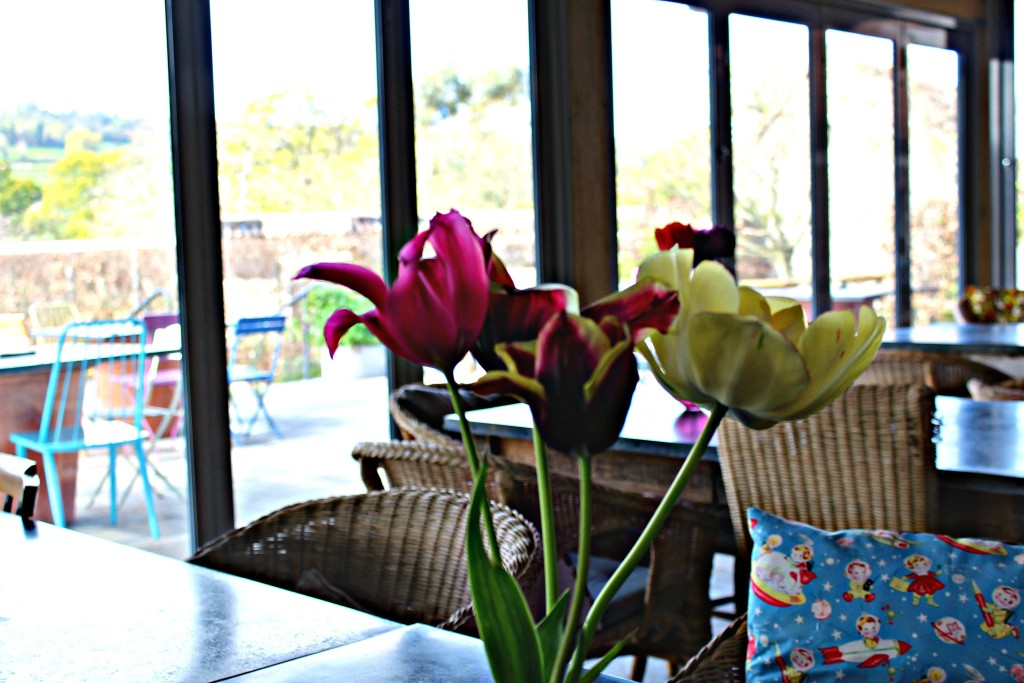 Yeo Valley Garden Cafe