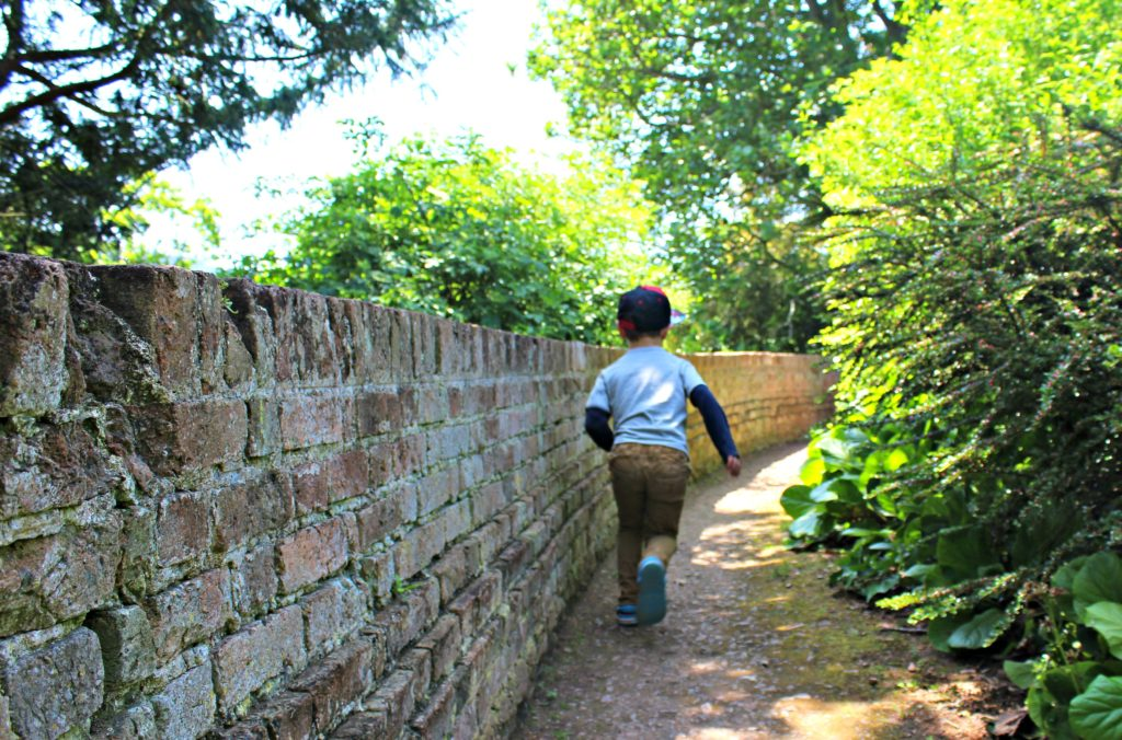 harry running around the periphery