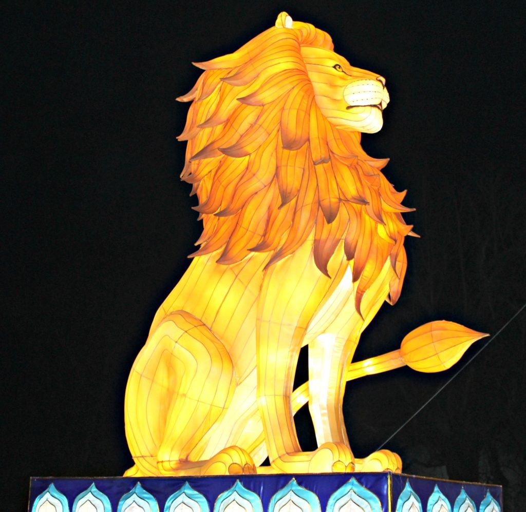 lion-lit-up-full