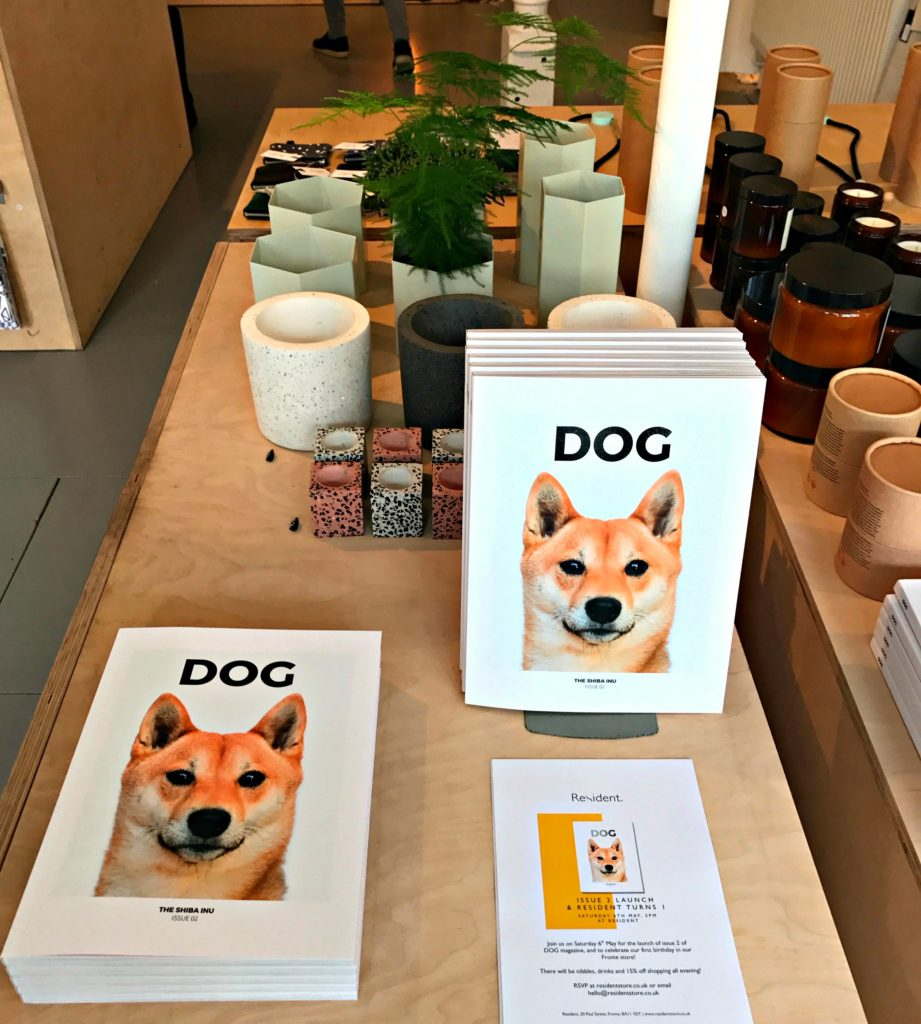 Dog-Magazine-At-The-Resident-Store-Frome