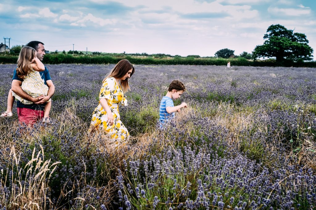 A family of four walk through the Somerset Lavender fields on a hot summers day during this family lifestyle photo session in Somerset.