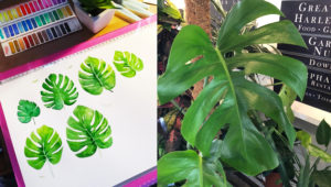 Photo of large green leaf on right, with painting of the leaf in watercolour on the left